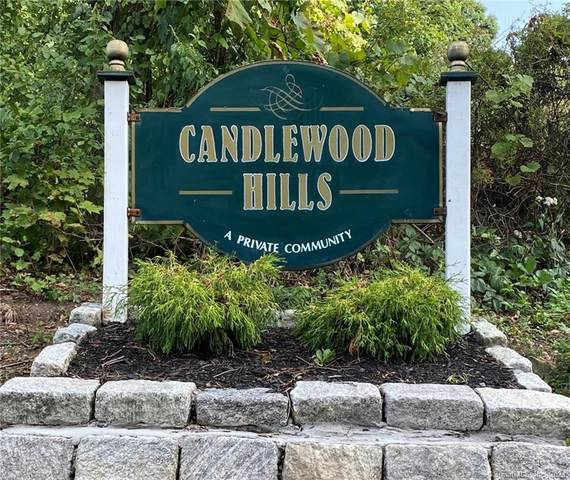 25 Linda Lane, New Fairfield, CT 06812 (MLS #170339296) :: Kendall Group Real Estate | Keller Williams