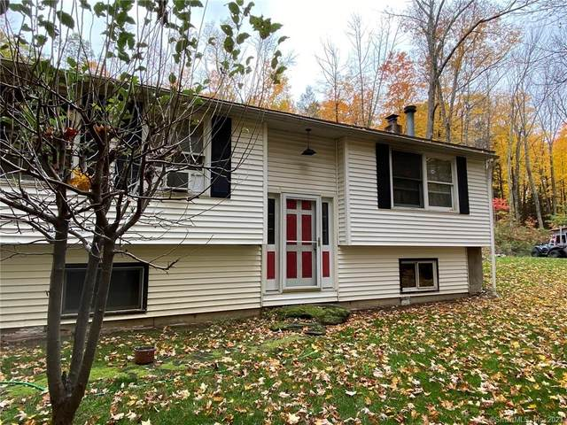 206 Route 63, Canaan, CT 06031 (MLS #170342266) :: Next Level Group