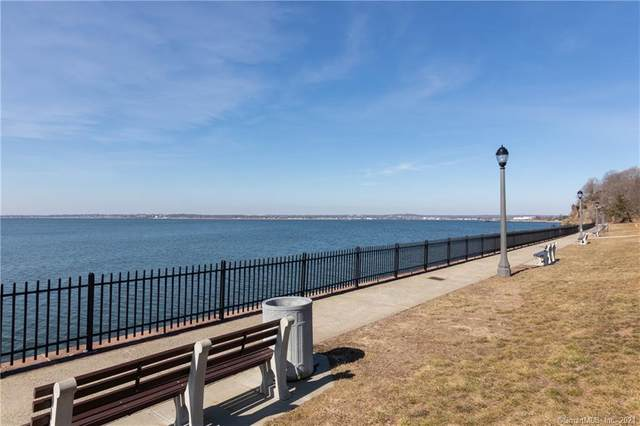 239 Townsend Avenue, New Haven, CT 06512 (MLS #170377939) :: Forever Homes Real Estate, LLC
