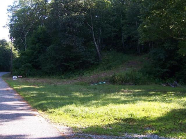 45 Johnson Road, Litchfield, CT 06759 (MLS #170066669) :: Mark Boyland Real Estate Team