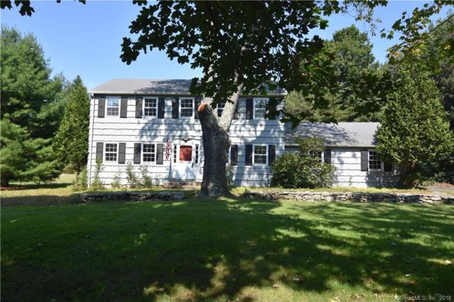 19 Hyvue Drive, Newtown, CT 06470 (MLS #170119890) :: Carbutti & Co Realtors
