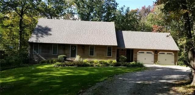 166 Skunk Misery Road, Haddam, CT 06441 (MLS #170420925) :: Michael & Associates Premium Properties   MAPP TEAM