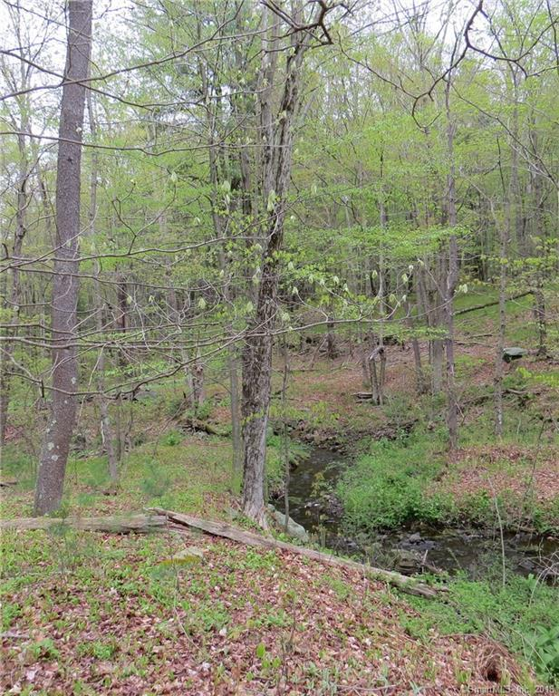 lot 4&5 Day Road, Cornwall, CT 06753 (MLS #170084383) :: Carbutti & Co Realtors