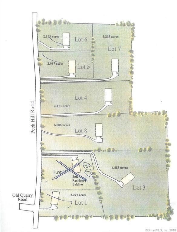 133 Peck Hill Road, Woodbridge, CT 06525 (MLS #170098727) :: Carbutti & Co Realtors
