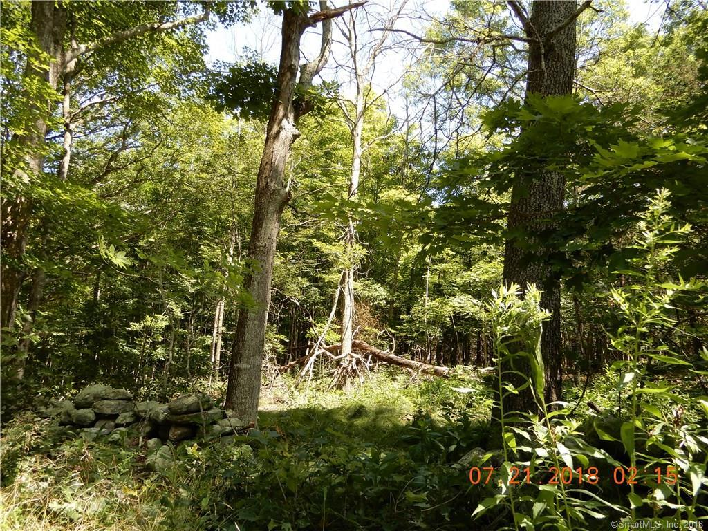1 Bear Hill Road - Photo 1