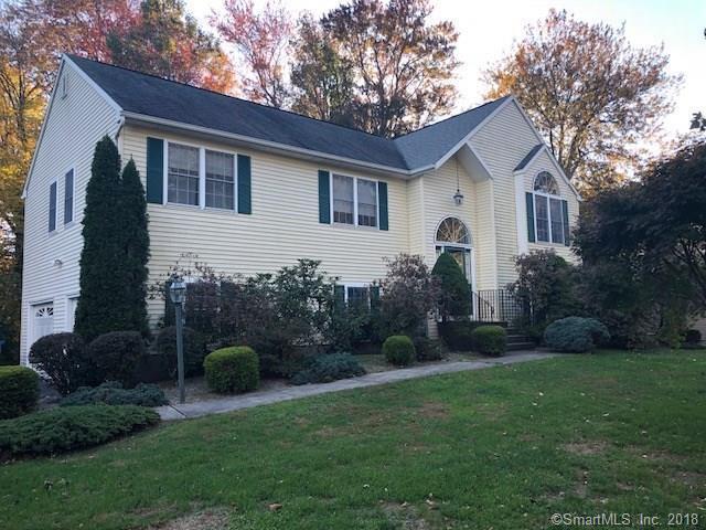19 Applewood Drive, Shelton, CT 06484 (MLS #170139212) :: Stephanie Ellison
