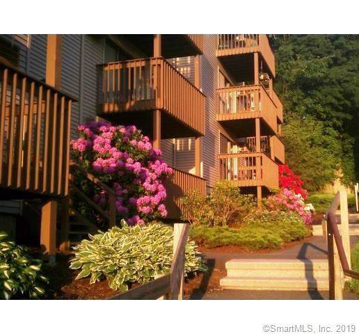 38 Padanaram Avenue B21, Danbury, CT 06811 (MLS #170228007) :: The Higgins Group - The CT Home Finder