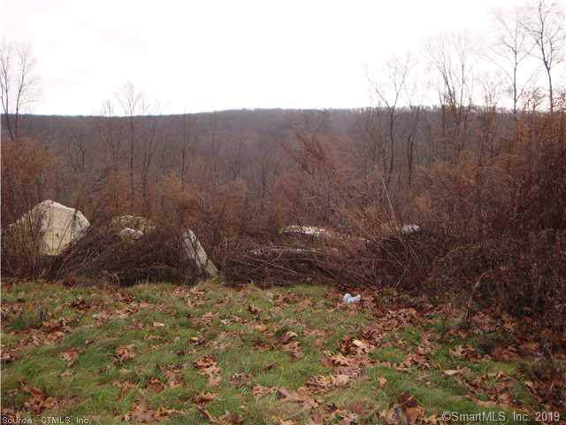 lot 17 Meshomasic Trail, Portland, CT 06480 (MLS #170237136) :: Spectrum Real Estate Consultants