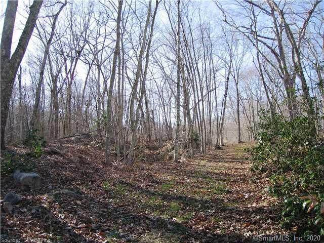 43-2 Saunders Hollow Road, Old Lyme, CT 06371 (MLS #170292959) :: Michael & Associates Premium Properties | MAPP TEAM