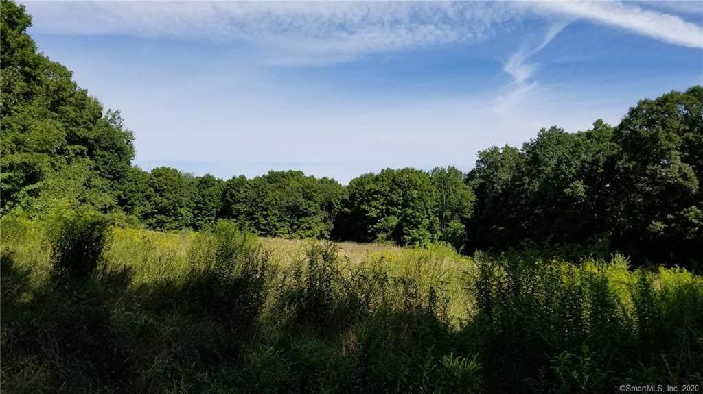 L12 Peck Lane - Photo 1