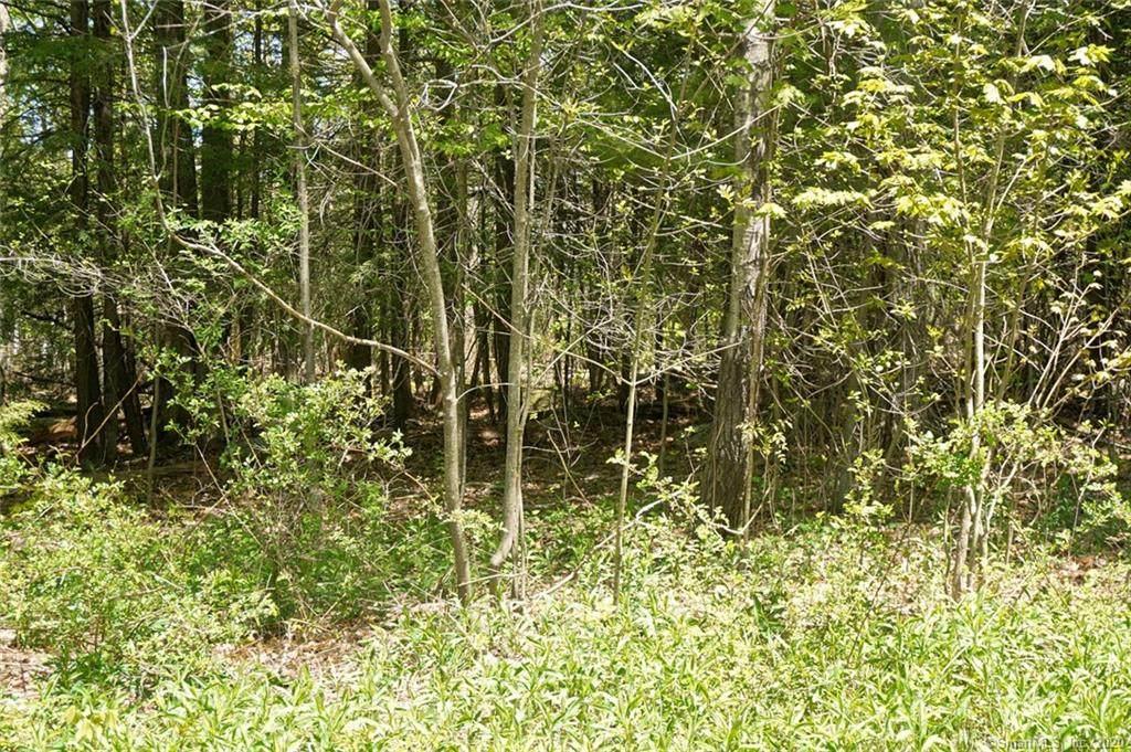 Lot 8B Eagle Ridge - Photo 1