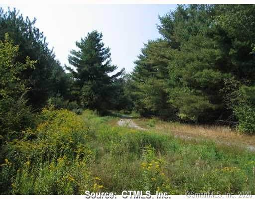 5 Maple View Trail, Litchfield, CT 06759 (MLS #170337531) :: Team Feola & Lanzante | Keller Williams Trumbull