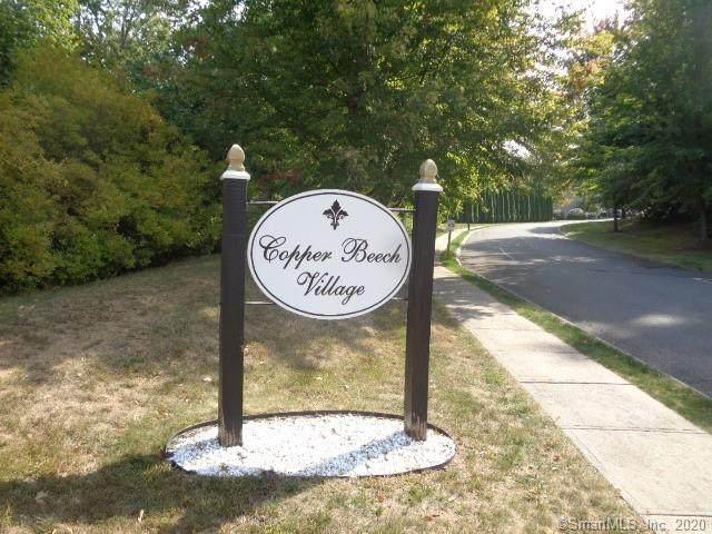 35 Copper Beech Lane - Photo 1