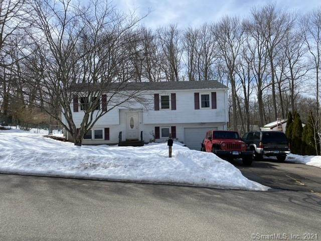 31 Spice Hill Drive, Meriden, CT 06451 (MLS #170375853) :: Tim Dent Real Estate Group