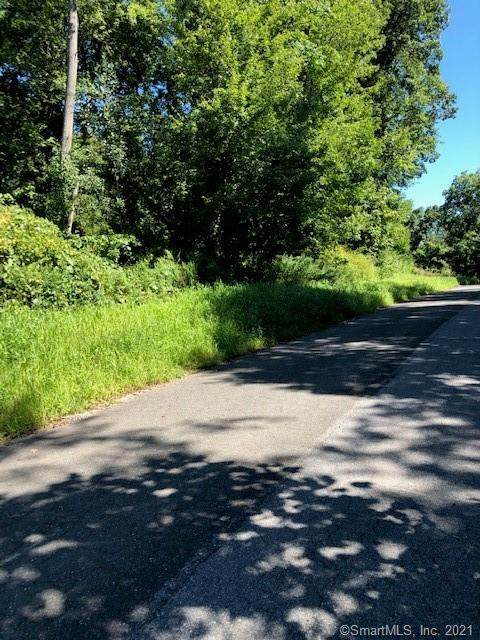 56 Stony Hill Road, Brookfield, CT 06804 (MLS #170378745) :: Around Town Real Estate Team