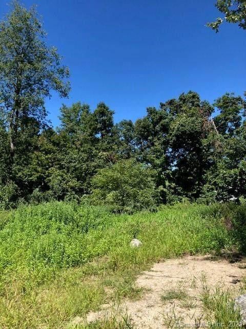 58 Stony Hill Road, Brookfield, CT 06804 (MLS #170378766) :: Around Town Real Estate Team
