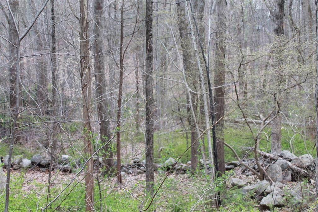4 Quail Ridge - Photo 1