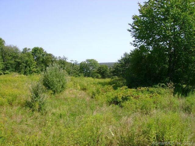 LOT 45 Starview Way, East Hampton, CT 06424 (MLS #170391185) :: Forever Homes Real Estate, LLC