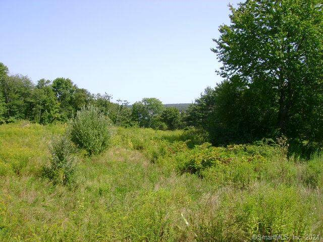LOT 46 Starview Way - Photo 1