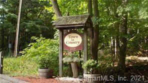 229 Bacon Pond Roads #342, Woodbury, CT 06798 (MLS #170397019) :: Frank Schiavone with William Raveis Real Estate