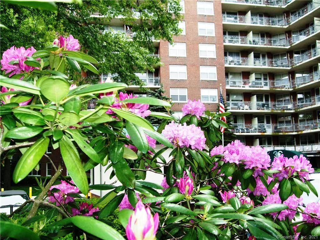 71 Strawberry Hill Avenue - Photo 1