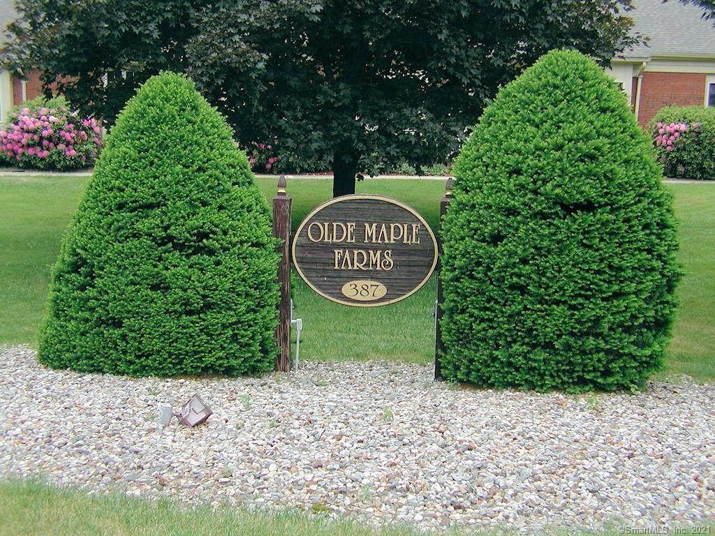 23 Olde Maple Farms - Photo 1