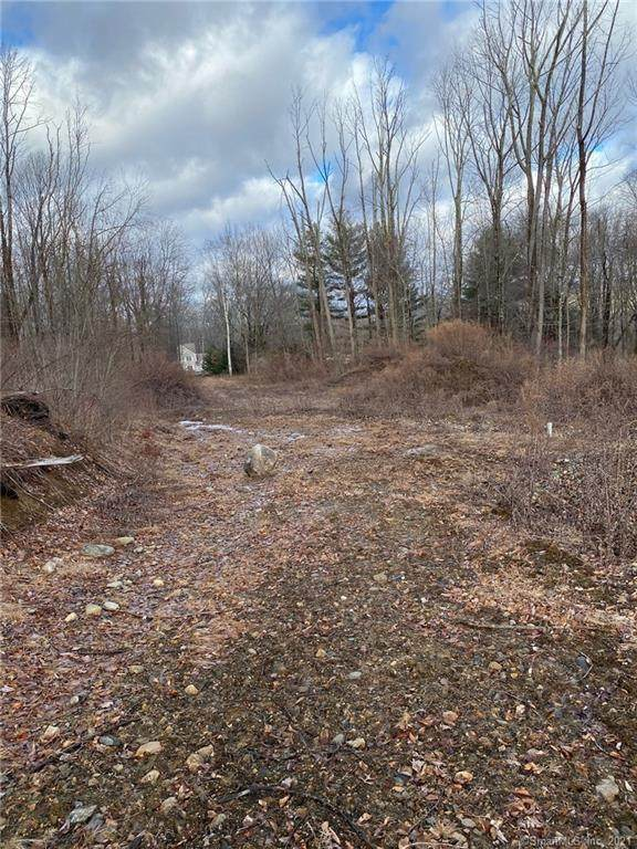 0 Reder Road, Litchfield, CT 06759 (MLS #170409931) :: Linda Edelwich Company Agents on Main