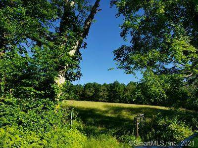 188 New City Road, Stafford, CT 06076 (MLS #170412048) :: Anytime Realty