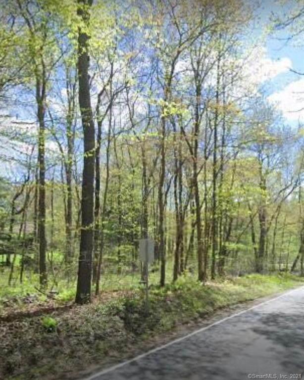 125 County Road, Morris, CT 06763 (MLS #170413007) :: Carbutti & Co Realtors