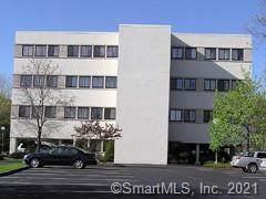 36 Mill Plain Road #302, Danbury, CT 06811 (MLS #170415404) :: Team Feola & Lanzante | Keller Williams Trumbull