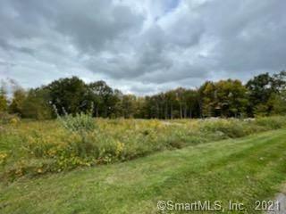 55 Old Hayrake Lane, New Milford, CT 06776 (MLS #170442697) :: Michael & Associates Premium Properties   MAPP TEAM
