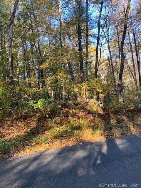 02A-2 Center Road, Woodstock, CT 06281 (MLS #170447164) :: RE/MAX Heritage