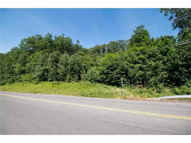 170 Coles Rd, Cromwell, CT 06416 (MLS #G10229500) :: Carbutti & Co Realtors