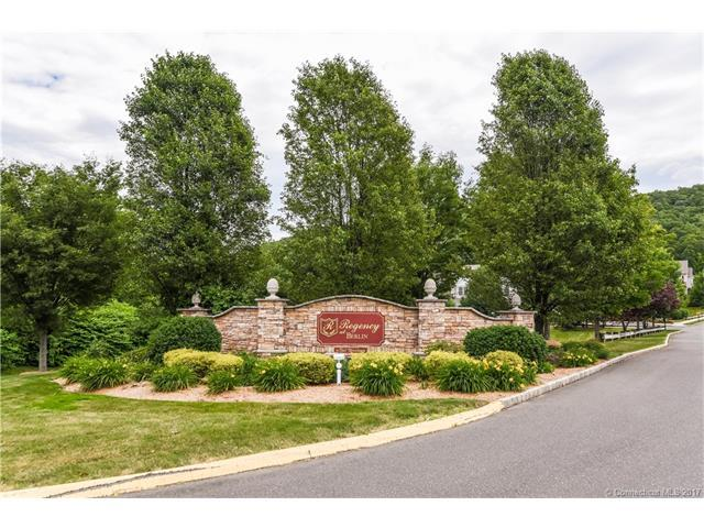 78 Bannan Ln #78, Berlin, CT 06037 (MLS #G10229746) :: Hergenrother Realty Group Connecticut