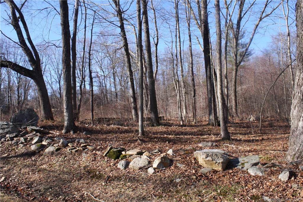 Lot 1 Campert Lane - Photo 1