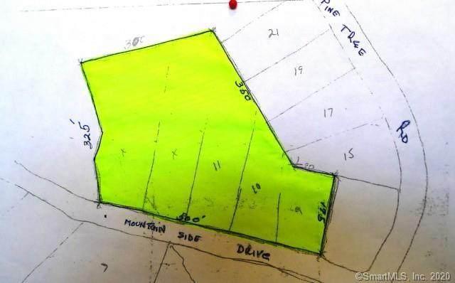 14 Mountainside Drive, Monroe, CT 06468 (MLS #170172918) :: Around Town Real Estate Team
