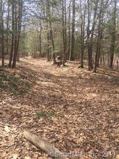 * Old Mine Road, New Milford, CT 06776 (MLS #170178919) :: The Higgins Group - The CT Home Finder