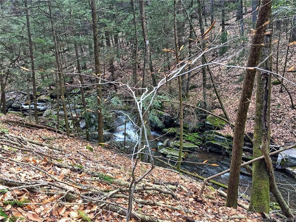 33 Woodcock Trail - Photo 1
