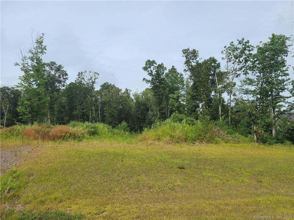 39 Brook Crossing Extension - Photo 1