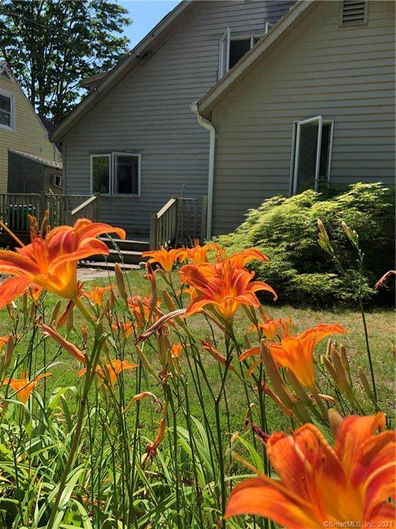 21 Shore Drive, Old Lyme, CT 06371 (MLS #170419037) :: Spectrum Real Estate Consultants