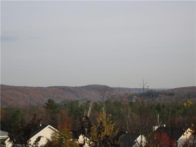 0 White Pine View - Photo 1