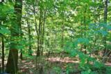 226 Hooded Warbler Ln - Photo 2