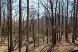 0 Fox Mountain Rd - Photo 18