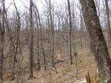 Upper Back Creek Rd - Photo 4