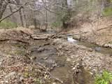 Upper Back Creek Rd - Photo 6