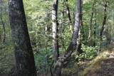TBD Pine Tree Rd - Photo 14