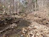 62 Acres Upper Back Creek Rd - Photo 10