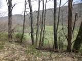 62 Acres Upper Back Creek Rd - Photo 14