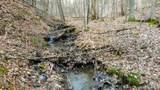 62 Acres Upper Back Creek Rd - Photo 2