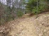 62 Acres Upper Back Creek Rd - Photo 5